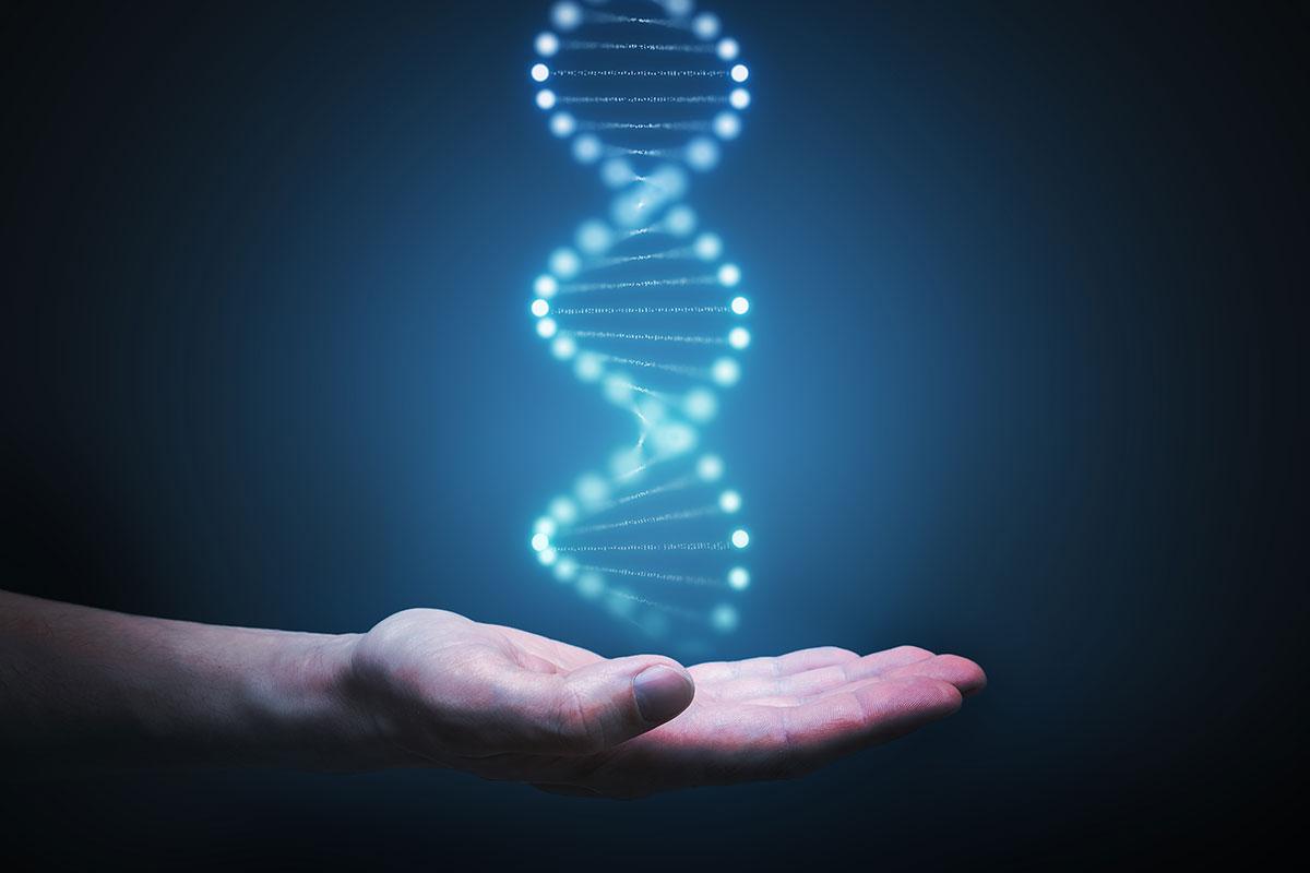 Исследование раскрывает последствия спаривания на молекулярном уровне